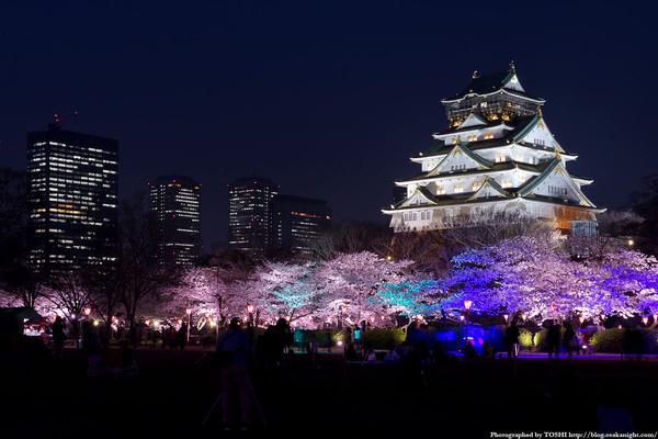Khám phá Osaka về đêm