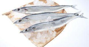 Cá thu đao Sunma Món ăn ngon của Nhật Bản tiết mùa thu