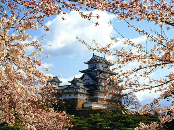 Tham quan những ngôi đền đẹp ở Kyoto