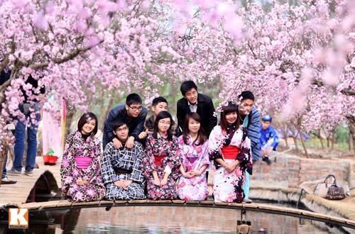 Trung tâm tư vấn du học Nhật Bản laodong24h.com